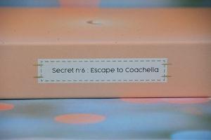 beautiful box coachella secret 6