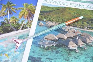 nos curieux voyageurs polynesie pinceau