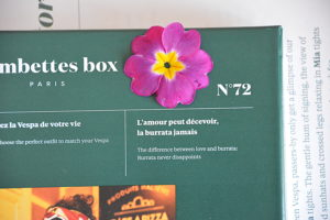 gambettes box mars 2019 14